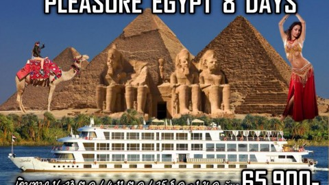 อียิปต์ PLEASURE EGYPT CRUISE  8D 5N  (MS)
