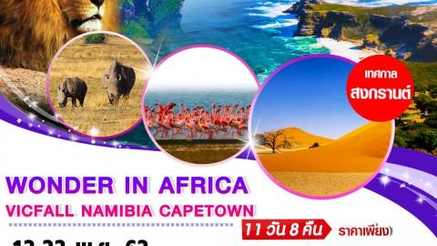 ทัวร์แอฟริกา