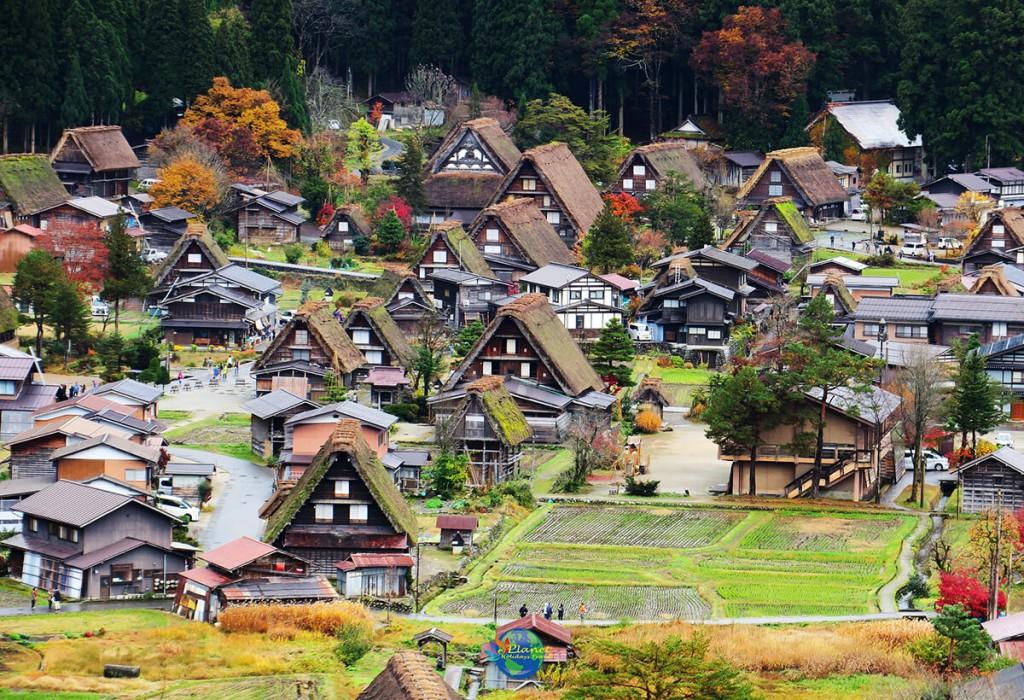 หมู่บ้านชิราคาวาโกะ 6