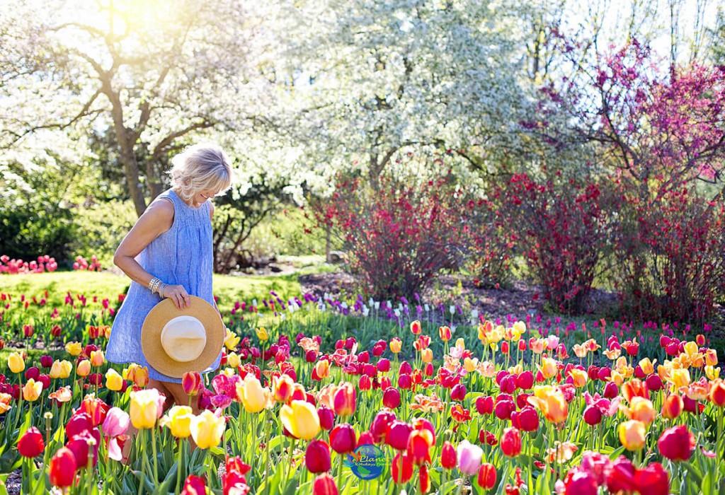 เทศกาลดอกทิวลิป 1